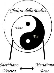 Chakra radici